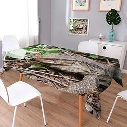 Philiphome Polyesters Square Tablecloth A Wild Rock Monitor